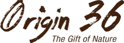 origin36-logo